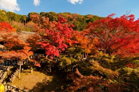 京都の紅葉 清水寺