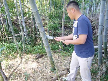 竹で流しそうめん
