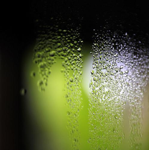加湿器と最適な湿度管理